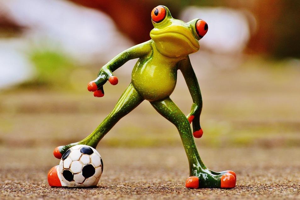 Sei kein Frosch, schau einfach mal bei TeaM Soccer auf #ddvlokalhilft vorbei!