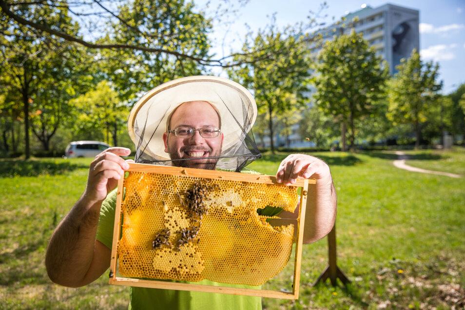 Gut für eine ertragreiche Ernte: Fünf Bienenvölker hat Tobias Unruh im Apfelgarten stationiert. Hier finden sie einen abwechslungsreichen Speiseplan und sorgen dafür, dass alle Pflanzen gut bestäubt werden.