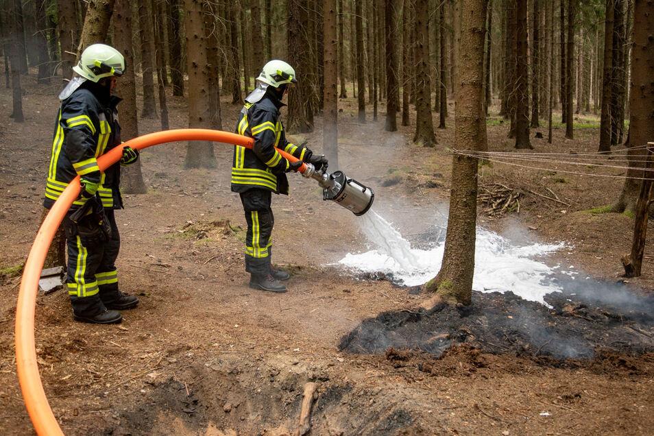 Die Feuerwehr deckte die Brandstelle im Bischofswerdaer Stadtwald mit Schaum ab.