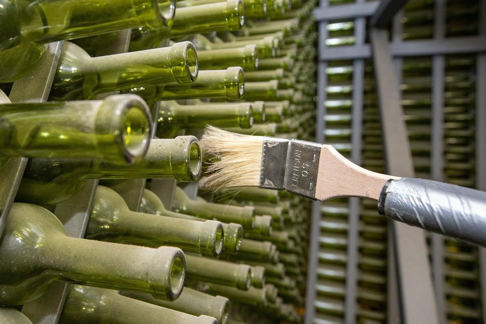 Die Installation ist aus knapp 12.000 leeren Weinflaschen gebaut, die in den letzten Jahren Staub angesetzt haben.