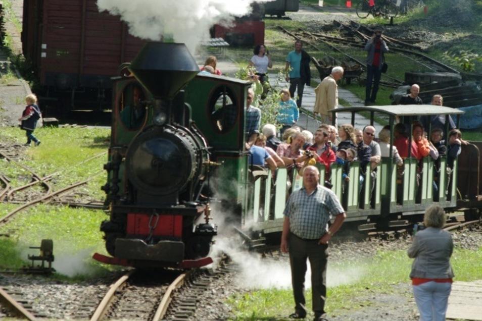 Die Feldbahnen an der Herrenleite bei Lohmen stehen das ganze Wochenende unter Dampf.