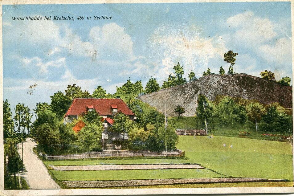 Auf dieser historischen Postkarte ist der Wilisch zu sehen. Hier sollte um 1910 ein Bismarckturm gebaut werden, um mehr Touristen anzulocken.