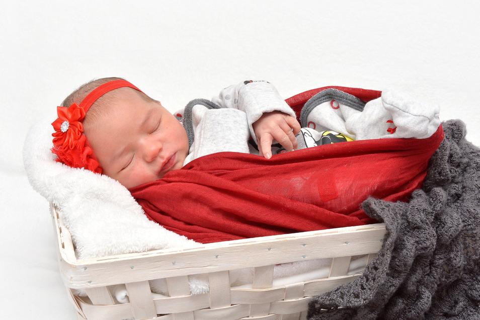 Jolyne Renesmee Zickler, geboren am 11. Januar, Geburtsort: Städtisches Klinikum Dresden, Gewicht: 2.970 Gramm, Größe: 47 Zentimeter, Eltern: Juliette Zickler, Wohnort: Dresden