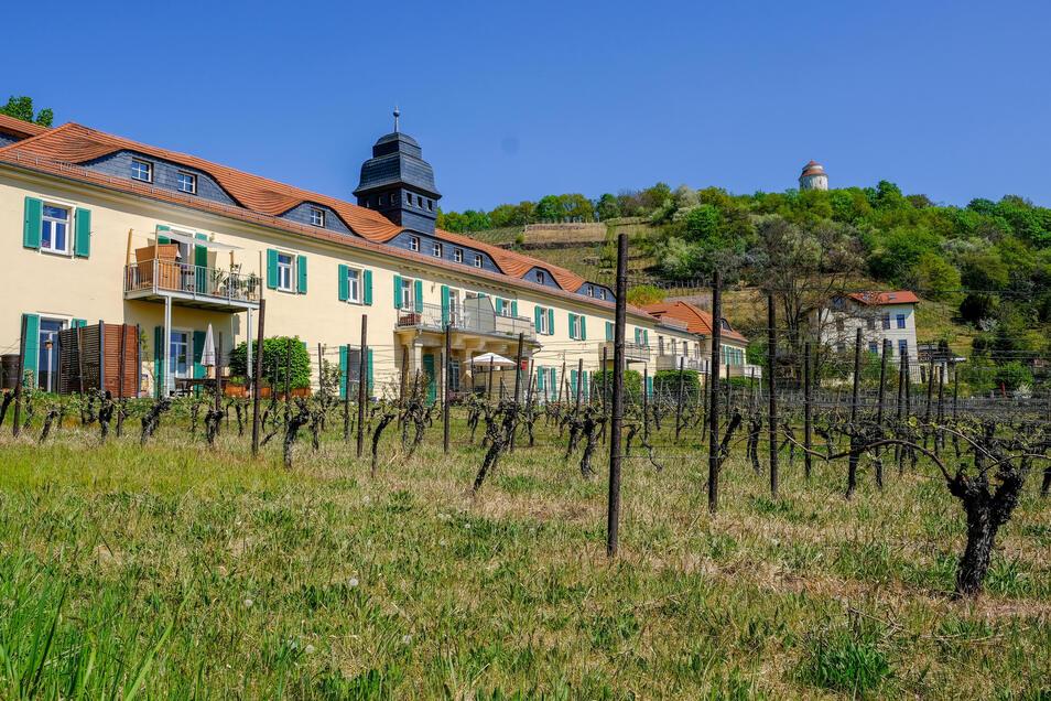Nicht nur das Gebäude der ehemaligen Bussard-Sektkellerei, sondern auch der Weinberg davor gelten jetzt als Kulturdenkmal.