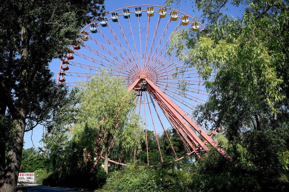 Das Riesenrad auf dem Gelände des ehemaligen DDR-Vergnügungsparks im Plänterwald. Das 45 Meter hohe Riesenrad aus dem Spreepark in Berlin-Treptow wird saniert.