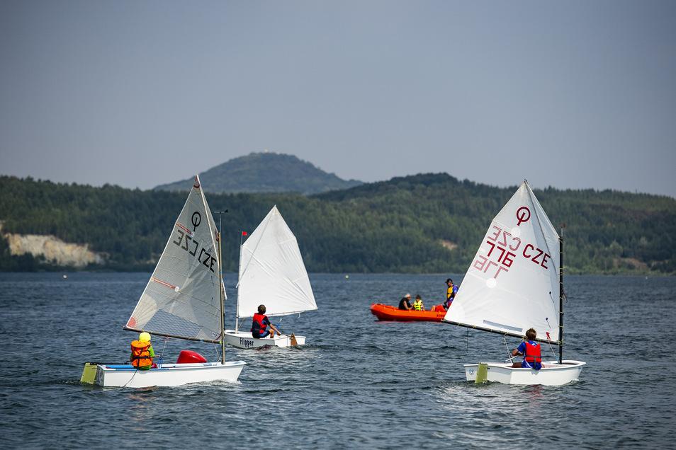 Segler vor der Kulisse der Landeskrone sind mittlerweile ein vertrautes Bild auf dem Berzdorfer See.