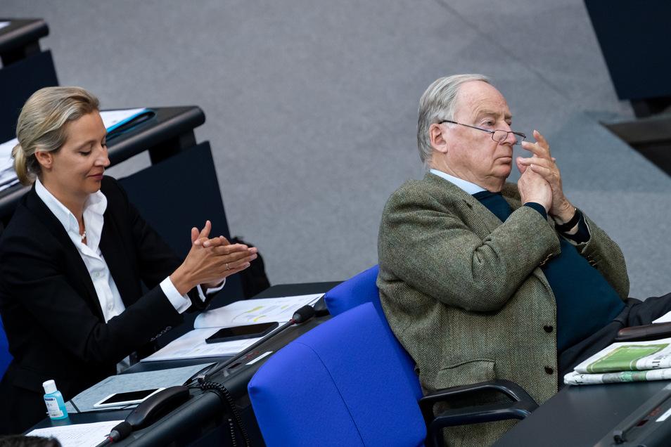 Alice Weidel und Alexander Gauland im Deutschen Bundestag. Die AfD-Fraktionschefin hat in jüngster Zeit viel Kritik auf sich gezogen.