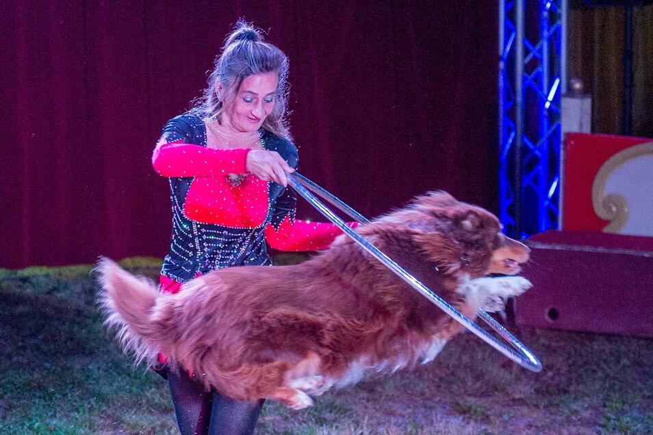 Patricia Lauenburger begeistert mit einer Haustierdressur. Und der Australian-Shepherd-Rüde Peaches mit Sprungkraft, Mut und Präzession.