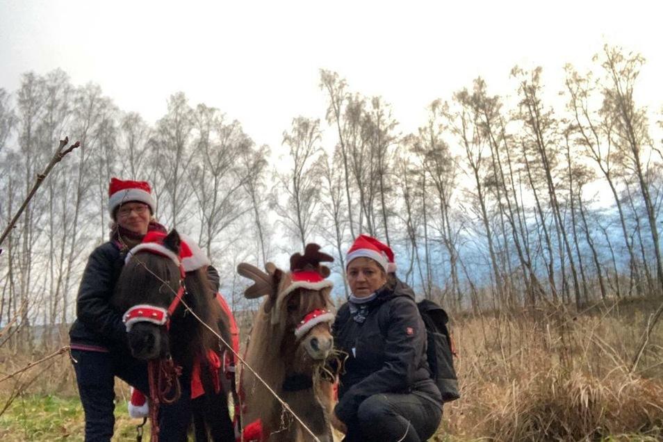 Magdalena Paul und Gabi Schönfelder machen einen Weihnachtsspaziergang mit unseren Ponys Maxi (28 Jahre) und Valdi (20 Jahre).
