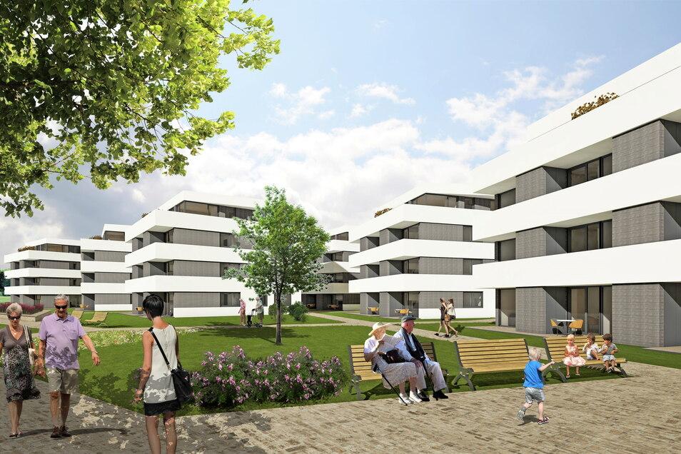 Geplanter Wohnpark an der B 172 in Pirna: acht Häuser mit 80 Wohnungen.