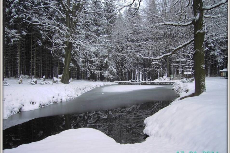 Winter in und um Steinigtwolmsdorf: Talsperre.