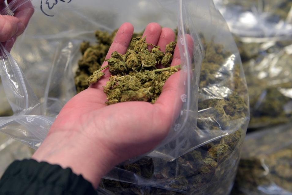 Mit kiloweise Marihuana hat auch Roger B. gehandelt.