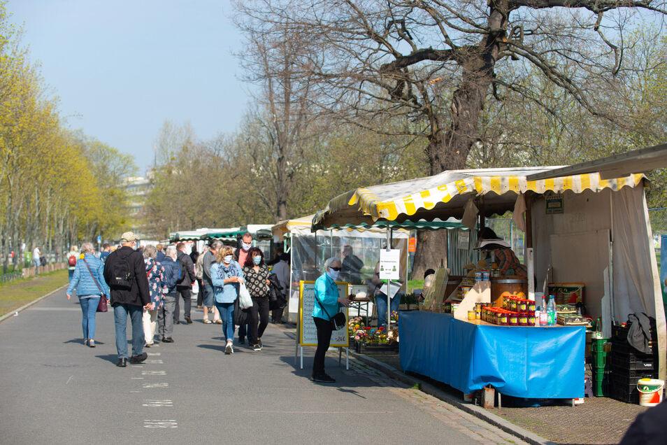Auf dem Wochenmarkt an der Lingnerallee haben sich die Besucher durch die Einlasskontrolle gut verteilt.
