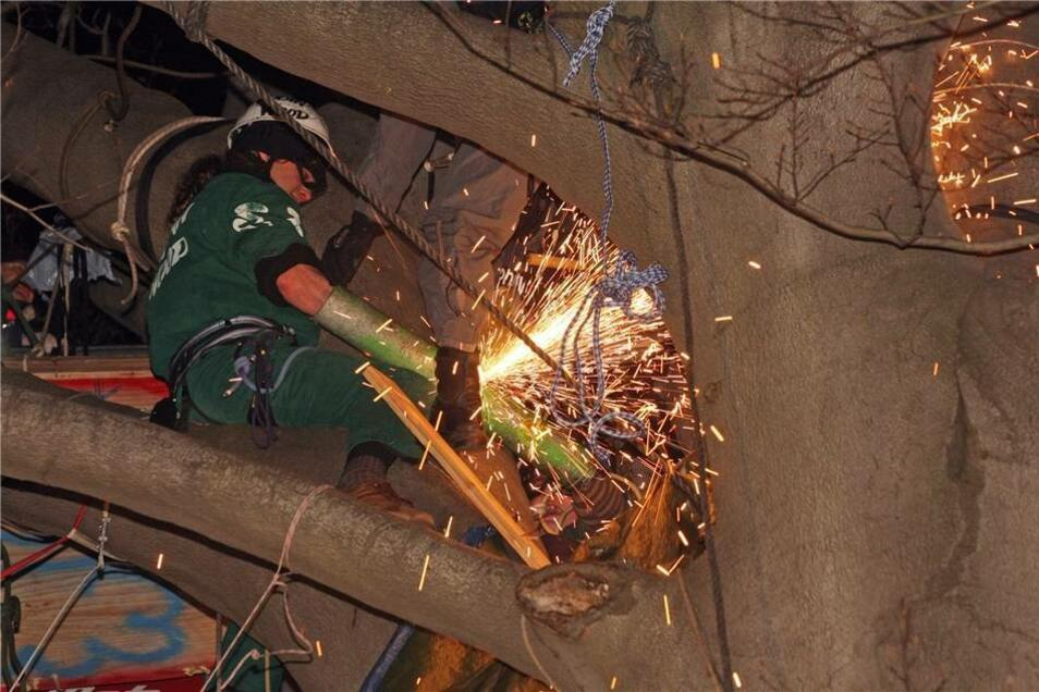 Baum-Protest im Januar 2008  Am 15. Januar wurde die besetzte Rotbuche von der Polizei geräumt. Die Landeshauptstadt Dresden hatte zuvor die Baumbesetzer zum Verlassen des Baumes aufgefordert. Der Aufforderung waren die Besetzer allerdings nicht gefolgt. Das Spezialeinsatzkommando des Landeskriminalamtes Sachsen (SEK) und die sächsische Bereitschaftspolizei unterstützten die Polizeidirektion Dresden bei der radikalen Räumung der Rotbuche.
