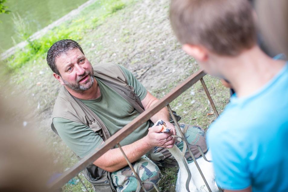 Schwanenexperte Thomas Eißer erklärt den Kindern, die das Beringen gespannt verfolgen, dass ein Schwanenbiss zwar wehtun kann, ein kräftiger Flügelschlag aber weitaus gefährlicher ist.