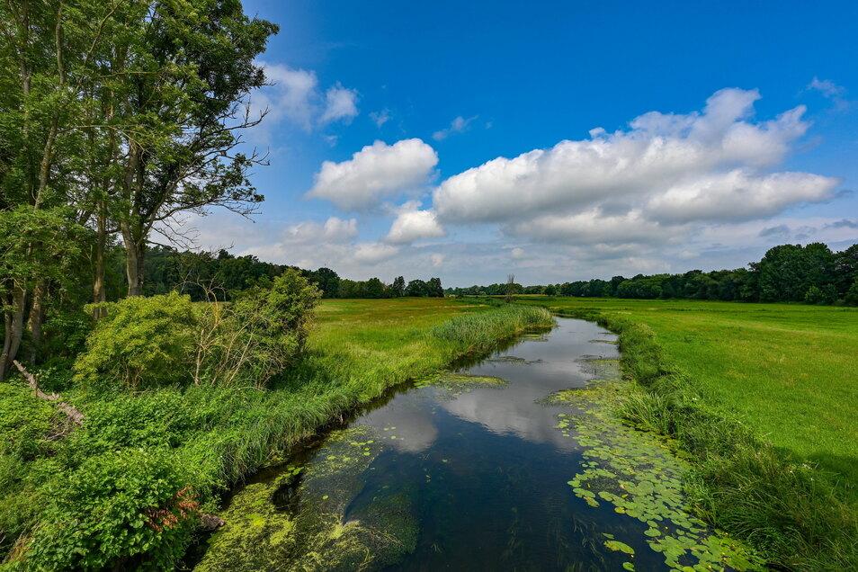 Die Zuständigkeit für fließende Gewässer und der Umgang mit den Uferbereichen ist klar geregelt.