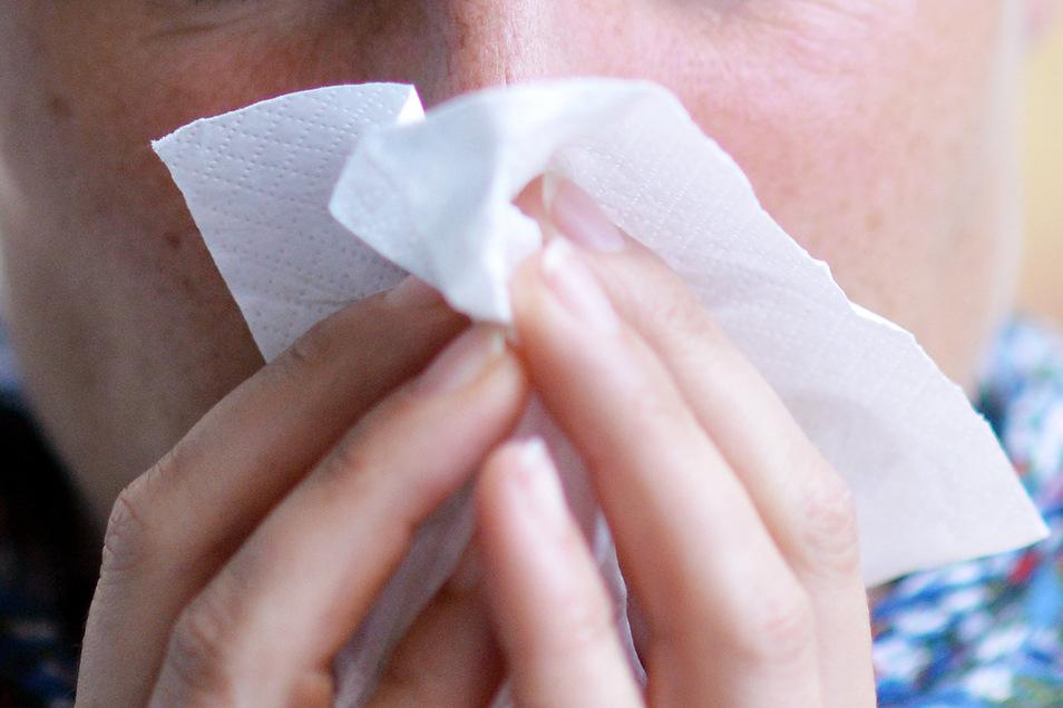 Über eine Erkältung und  triefende Nasen klagen derzeit etliche Menschen. Eine Grippewelle ist derzeit im Landkreis Görlitz aber nicht im Anmarsch.