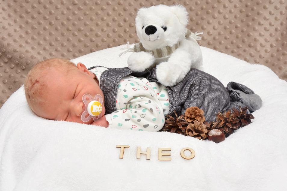 Theo Naumann, geboren am 14. Januar, Geburtsort: Städtisches Klinikum Dresden, Gewicht: 3.780 Gramm, Größe: 51 Zentimeter, Eltern: Cindy und Rudi Naumann, Wohnort: Arnsdorf
