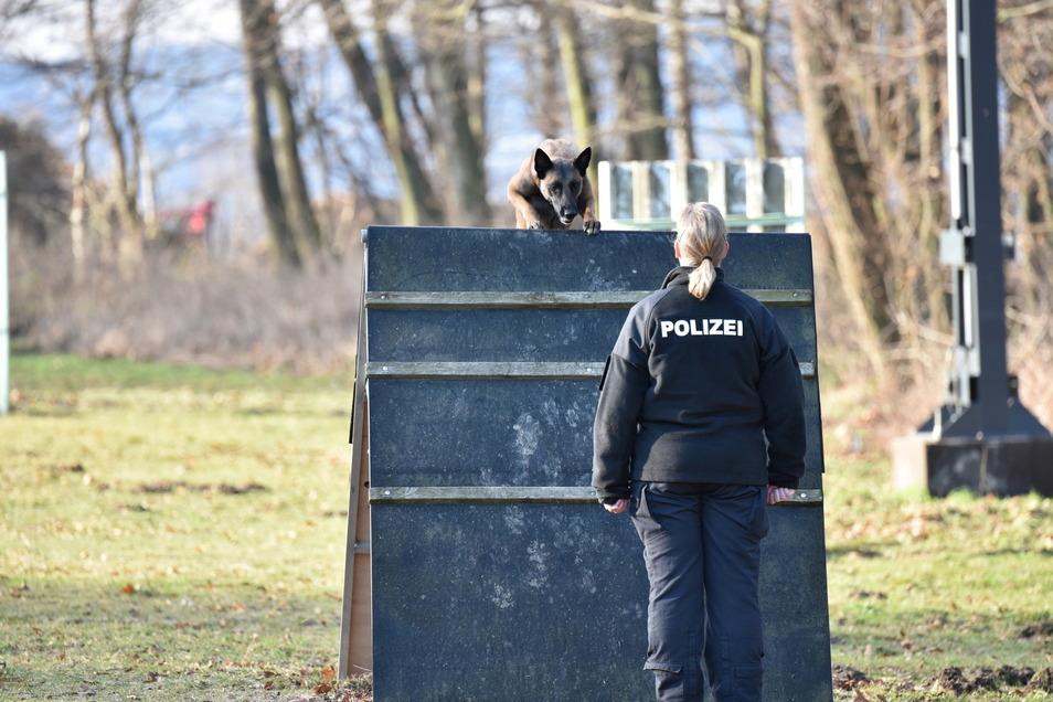 In Salzenforst hatten fünf Hundeführer der Polizeidirektion Görlitz die erste Prüfung in diesem Jahr mit ihren vierbeinigen Partnern.