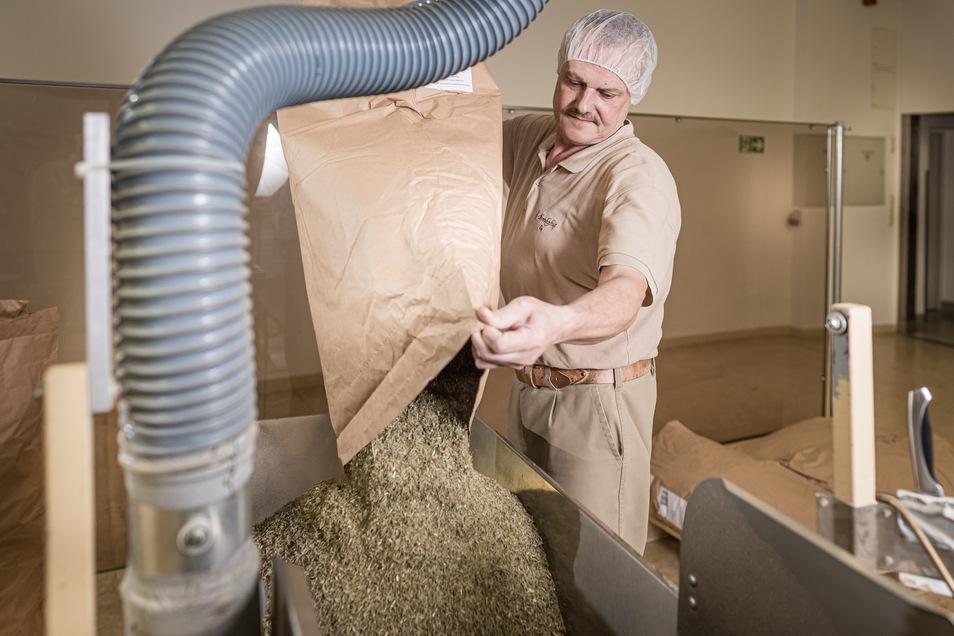 Michael Richter bedient in der Produktion der Bombastus Werke eine Grobschnitt-Abfüllmaschine in der Spitzwegerich verarbeitet wird.