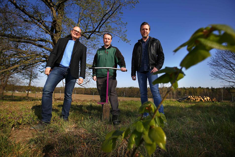 Henrik Lindner (Mitte) hat mit seiner Stiftung ein neues Stück Wald bei Kamenz geschaffen. Die Firma Meditech aus Pulsnitz mit den Geschäftsführern Maik Lange (l.) und Karsten Leonhardt stellte dafür Geld bereit.