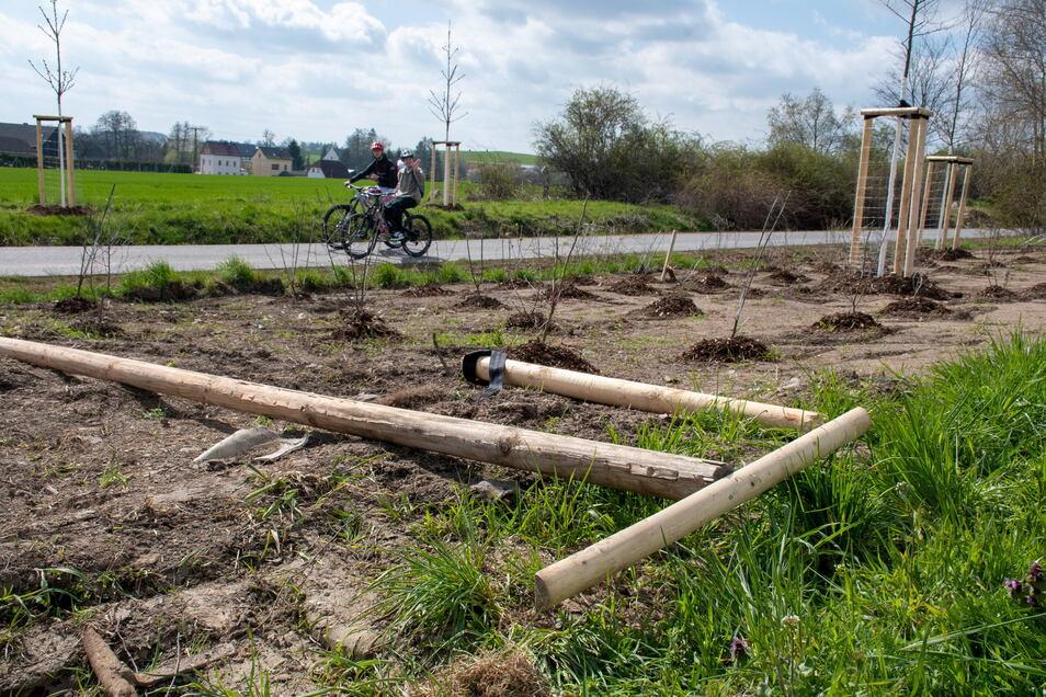 Am Radweg Waldheim-Hartha-Geringswalde haben Unbekannte erst vor kurzem Teile der Ausstattung zerschlagen.