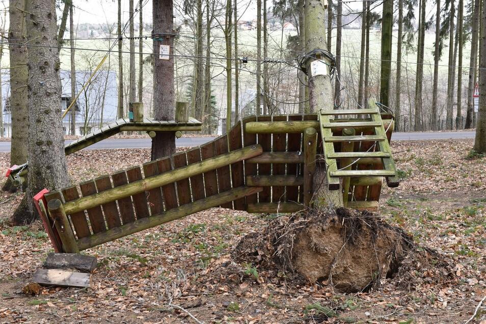 Nicht nur die Einbauten für den Waldseilpark sind zerstört. Viel schlimmer ist, dass die Bäume, welche die Basis des ganzen Unternehmens sind, auch entwurzelt und gebrochen sind.