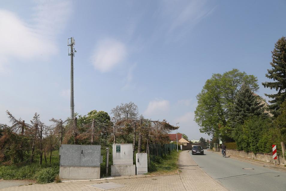 So oder so ähnlich könnte der Ortseingang von Bobersen gegenüber dem Reiterhof bald aussehen: Damit das schnelle Internet in den Ort kommt, soll dort ein zehn Meter hoher Funkmast installiert werden.