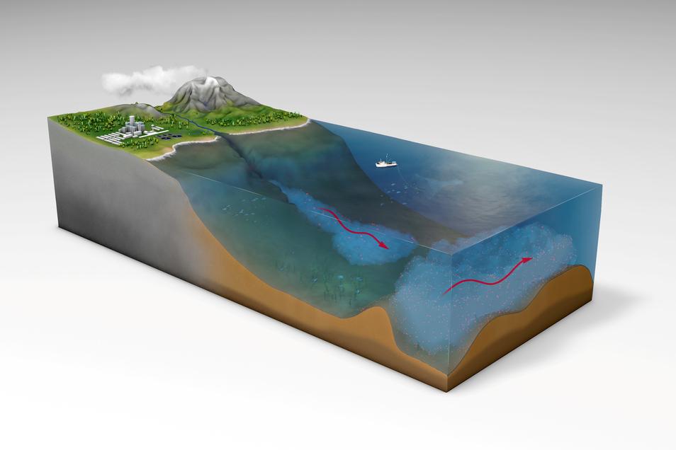 Strömungen in der Tiefsee führten zu großflächigen Ablagerungen von Mikroplastik am Meeresboden.