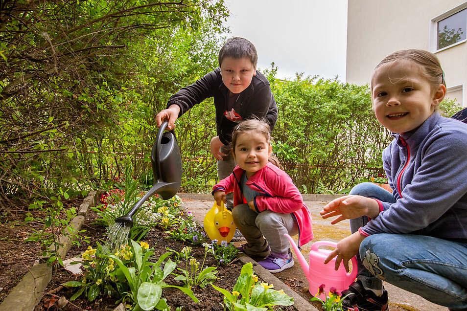 Der zehnjährige Nico Schmaler sowie seine Schwestern Lilly (2) und Laura (5) kümmern sich um die neue Blumen-Rabatte direkt vor dem Hauseingang. Das älteste der drei Kinder hat sie mehr oder weniger in Eigenregie angelegt.