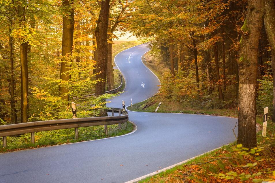Kurvige Landstraße durch die Sächsische Schweiz bei Hohnstein: Die Perfektion wird nur durch die vergossenen Risse im Asphalt geschmälert.