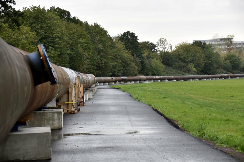 2,6 Kilometer lang ist die Rohrleitung, die über einen langen Bogen vom Beginn der Scharfenberger Straße durch die Flutrinne zum Klärwerk führt.
