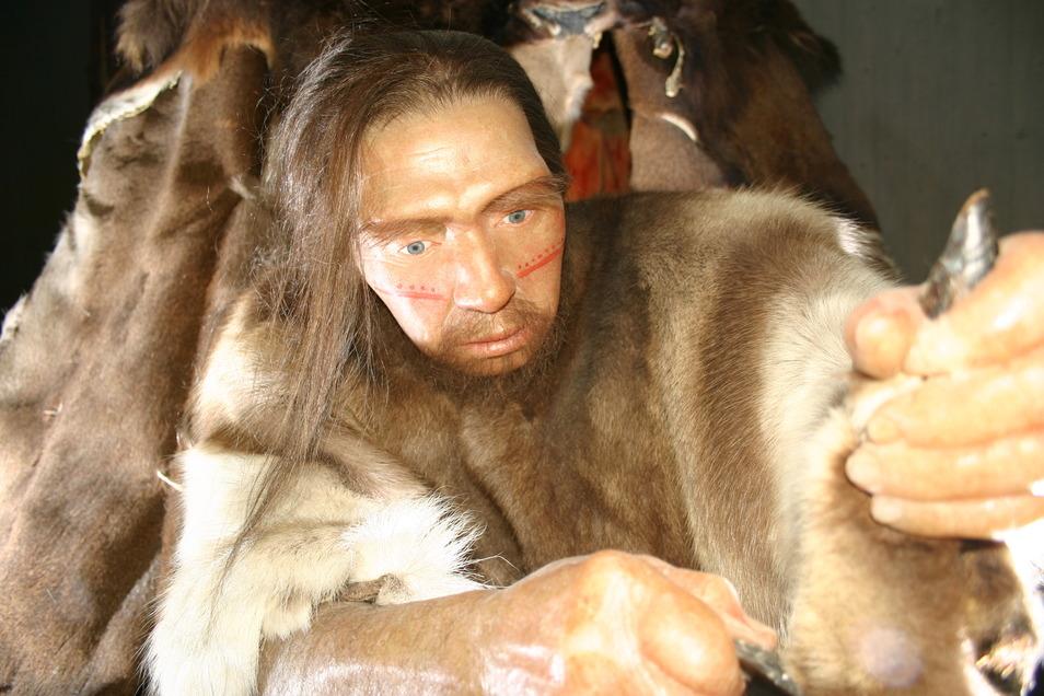 Werkzeuge, Kultur und Schmuck - die Neandertaler hatten es, die ankommenden Neumenschen ebenso, nur anders. Hier eine Neandertaler-Rekonstruktion im Museum Mettmann.