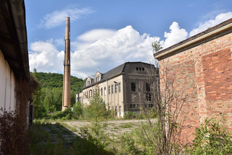 Diese Industriebrache hinter der Coschützer Straße, ehemals Alpha Chemie, soll saniert werden. Hier entsteht ein kleineres Gewerbegebiet.
