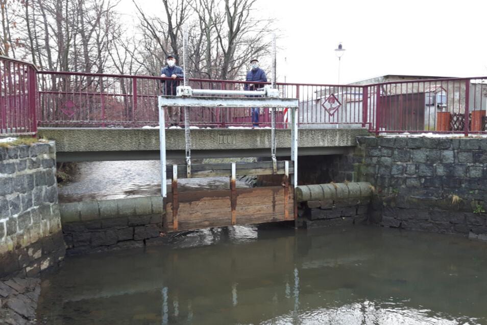Ungehindert fließt das Wasser der Schwarzen Elster durch das Wehr in Dörgenhausen. Eine Verschwendung, finden Landwirt Benno Domania (li.) und Ortsvorsteher Eugen Diesterheft.