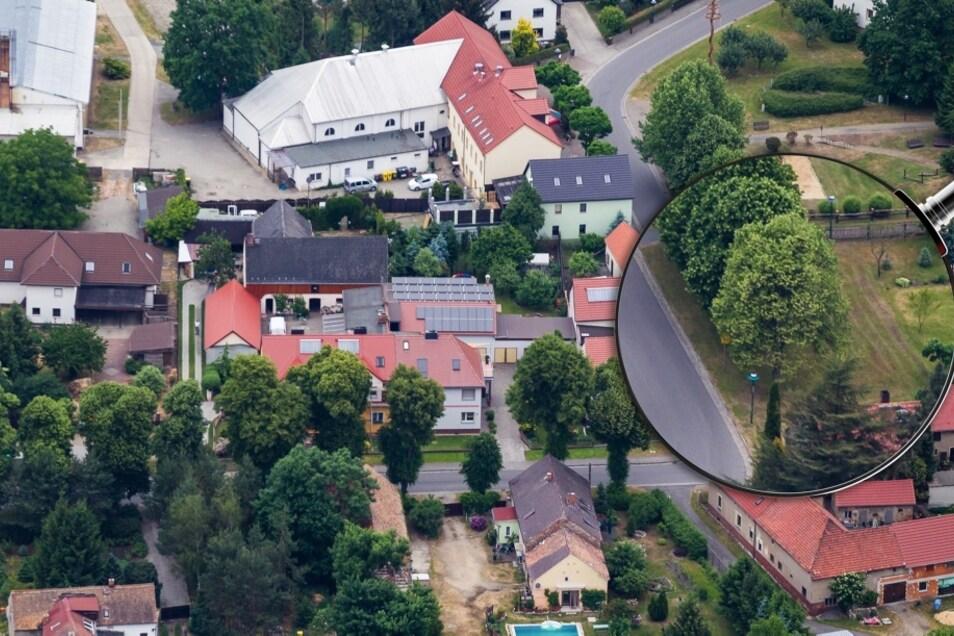"""Dieses Foto entstand im Juni 2015 in Wiednitz unweit des Vereinshauses """"Jägerhof"""" (am oberen Bildrand). Damals war die Krone der Linde (in der Lupe) noch dicht und das Blätterwerk saftig grün. Mittlerweile befindet sich der Baum im Absterbe-Prozess, sagt"""