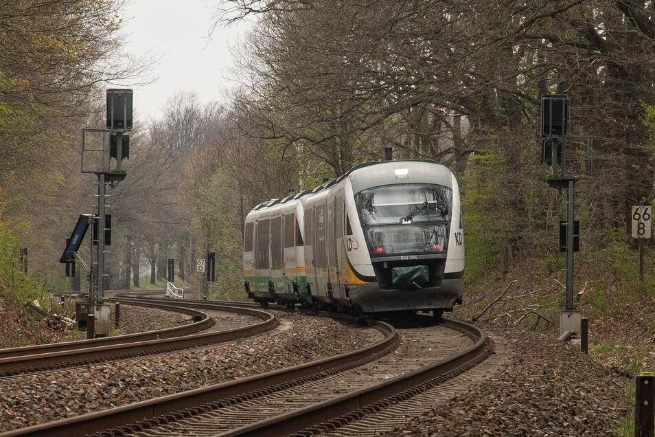 Ein Trilex-Zug ist am Mittwochvormittag zwischen Bautzen und Löbau mit einem Baum kollidiert.