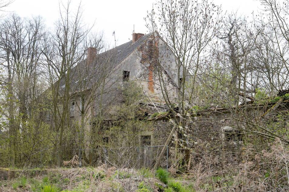 Die Pfeiffergasse 4 in Ludwigsdorf: Das Wohnhaus (hinten) steht noch, der Kuhstall (vorn) ist teilweise eingestürzt. Beides steht unter Denkmalschutz.
