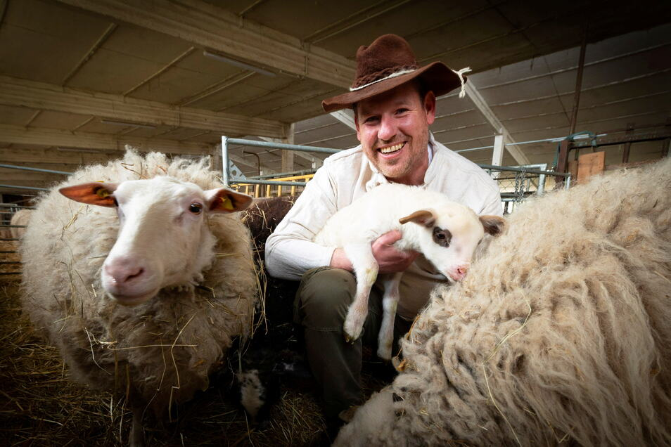 Daniel Hammer bereitet das Frühlingsfest des Wachauer Vereins Wunder Land vor. Wegen der Corona-Beschränkungen findet es in diesem Jahr nur virtuell statt. Ein Höhepunkt ist die Aufzeichnung der Schafschur.