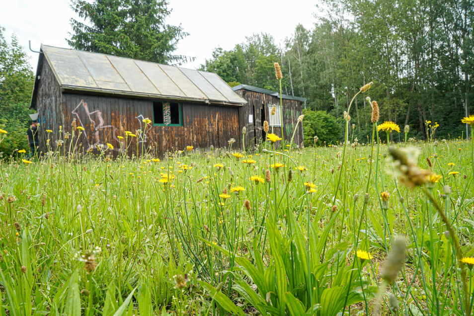 """In dieser Hütte an der Lessingstraße in Bischofswerda, wo sich einst der Jugendclub """"Baude"""" befand, soll ein neuer Jugendtreff entstehen. Das sorgt in der Stadt für Diskussionen."""