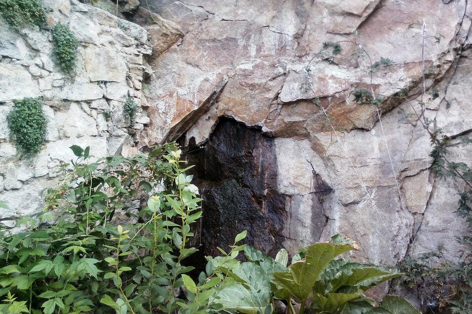 Hinter dem Haus der Schattels tropft es stetig aus der Felswand. Laut der Familie ist das erst seit den Probebohrungen oben auf der Ortenburg so.