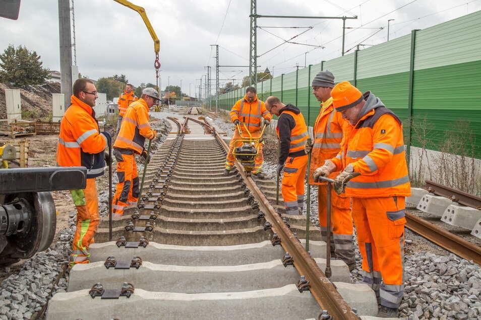 Werden so wie hier in Niesky am Bahnhof in einigen Jahren auch Gleise durch das Waldgebiet nördlich der Stadt gelegt? Diese Frage zum Projekt Eisenbahntestring kann gegenwärtig keiner der Verantwortlichen beantworten.