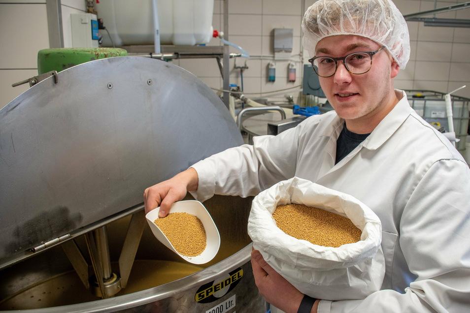 Tim Wagner bei der Herstellung von Marder Senf. Für die Produktion der beliebtesten scharfen Sache in der Region werden ausgewählte Senfsaaten verwendet.