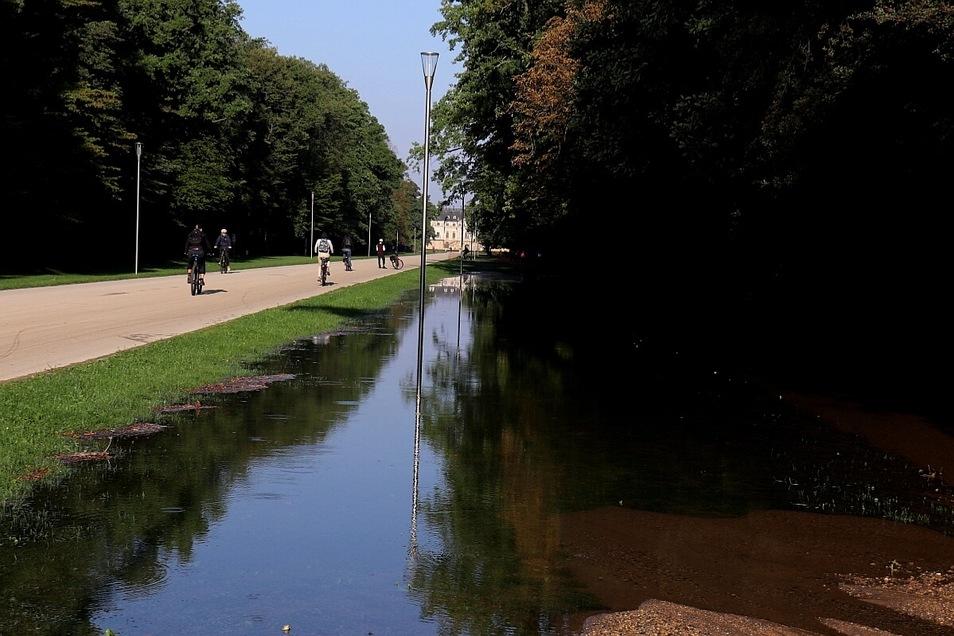 Ein Wasserrohrbruch hat am frühen Mittwochmorgen die Karcherallee am Großen Garten in Dresden geflutet. Das Wasser lief auch in den Park.