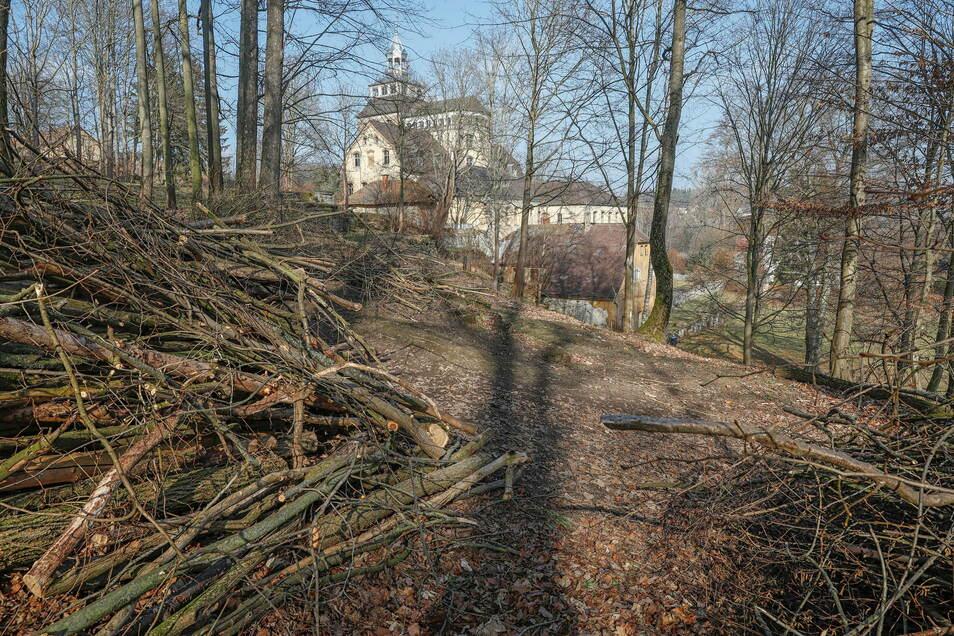 Die Vereinsmitglieder haben jetzt im früheren englischen Garten am Hainewalder Schloss viel Totholz und Wildwuchs beseitigt.
