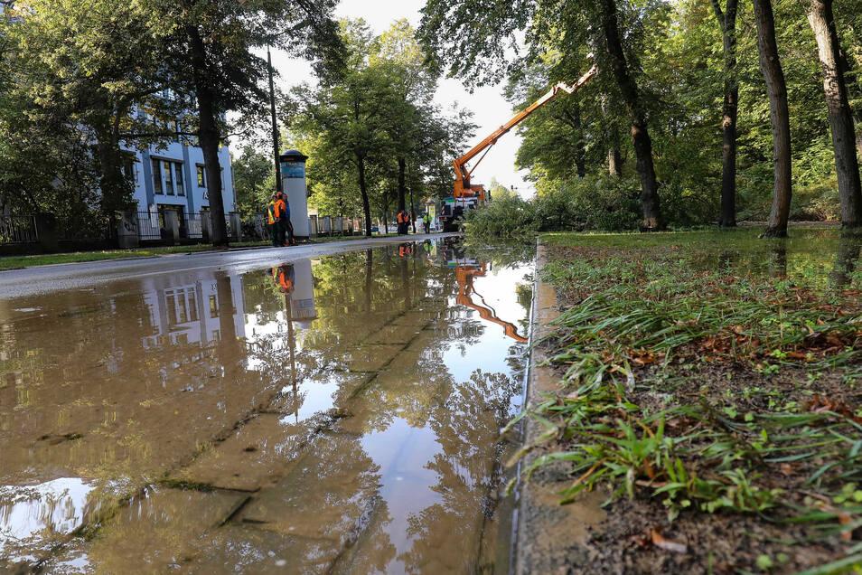 Ende September kam es zu einem Wasserrohrbruch an der Karcherallee in Dresden. Nun soll die gesamte Wasserrohrleitung saniert werden.