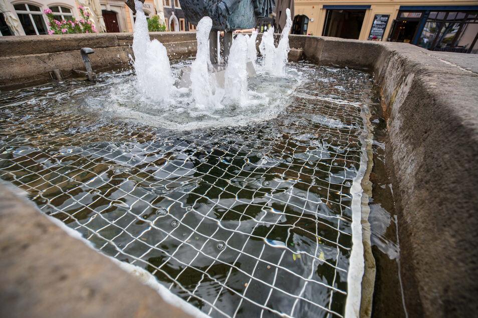 Bei genauerem Hinschauen sind die kleinen Münzen im Wasser der Brunnen in der Altstadt von Pirna erkennbar.