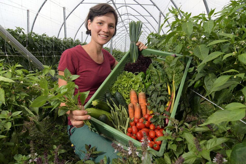 Das Team des Ostrauer Auenhofes liefert regelmäßig erntefrisches Obst und Gemüse an die Grundschüler, die so ein gesundes Frühstück bekommen