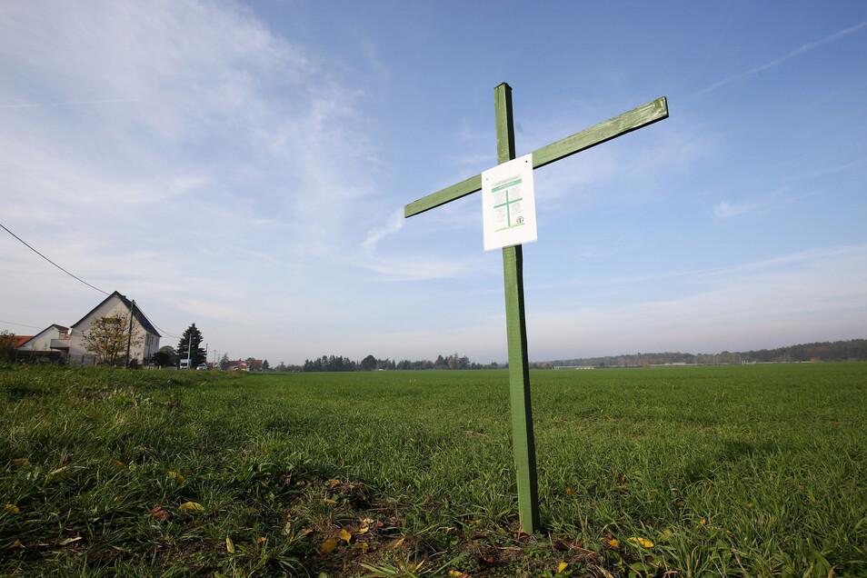 Grüne Kreuze Auf Dem Feld