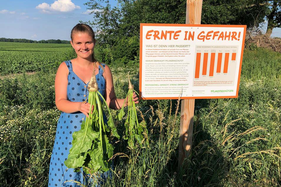 In ihrer rechten Hand hielt Vroni Hentschel im Juni vergangenen Jahres eine Zuckerrübe, die auf dem bestellten Feld (im Hintergrund links) mit Hilfe von modernem Pflanzenschutz wachsen konnte.